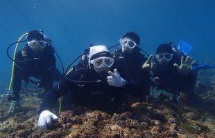 0304diving
