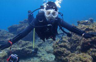 0215屋久島ダイビング